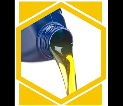 Oil Change Lakewood